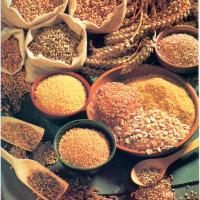 Los cereales son alimentos ricos en carbohidratos