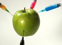 La manzana, ejemplo de alimento transgenico